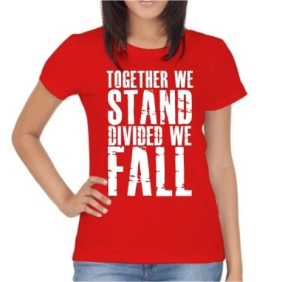 Together we Stand Divided we Fall
